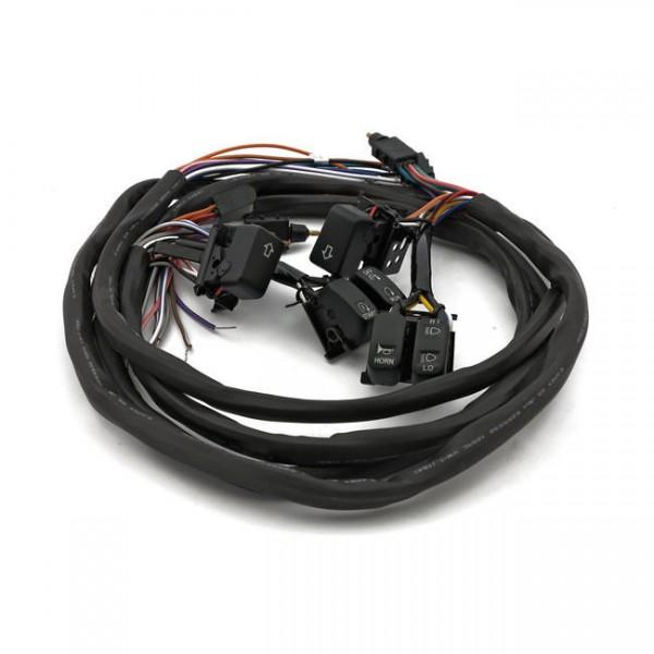 Schalter Set LED für Armaturen Schwarz Tempomat f. Harley-Davidson Touring 96-06